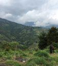 Colombia Pico De Aguila Reserve Location