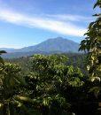 Guatemala El Mirador location