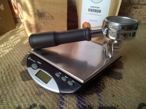 Envy-Bench-Scales